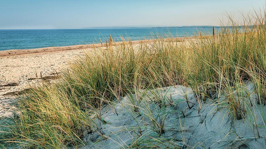 Frische Farben, inspiriert von unserer Küstenregion. © Gina Bromá – stock.adobe.com