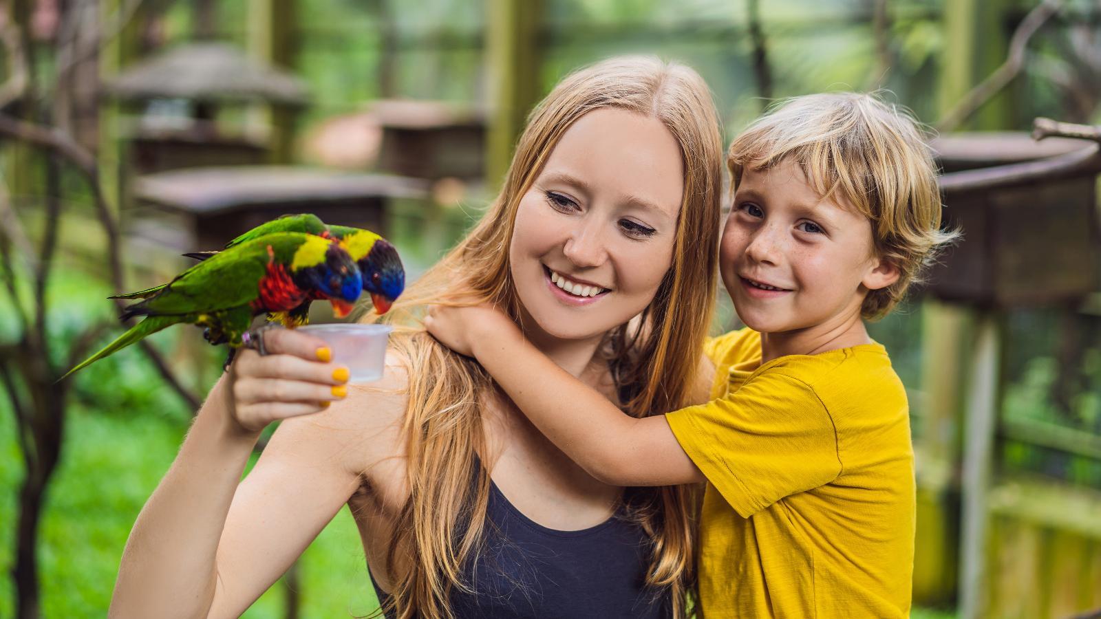 Vogelpark Marlow -