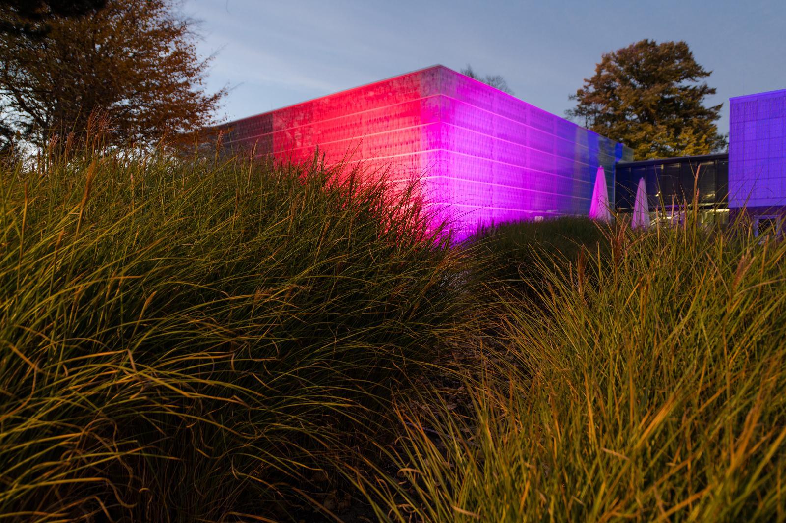 Die Kunsthalle war das erste mal vertreten bei der Lichtwoche. Foto: Margit Wild