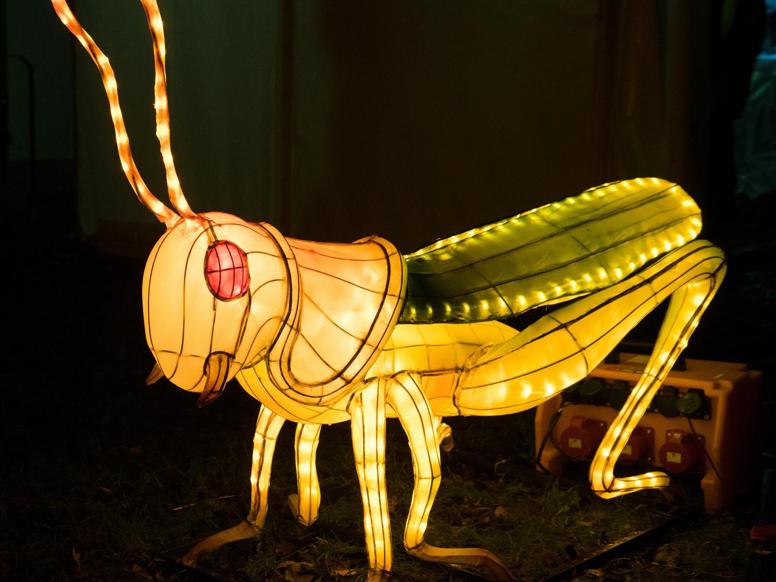 Die leuchtende Heuschrecke wartet im Klostergarten auf Besucher