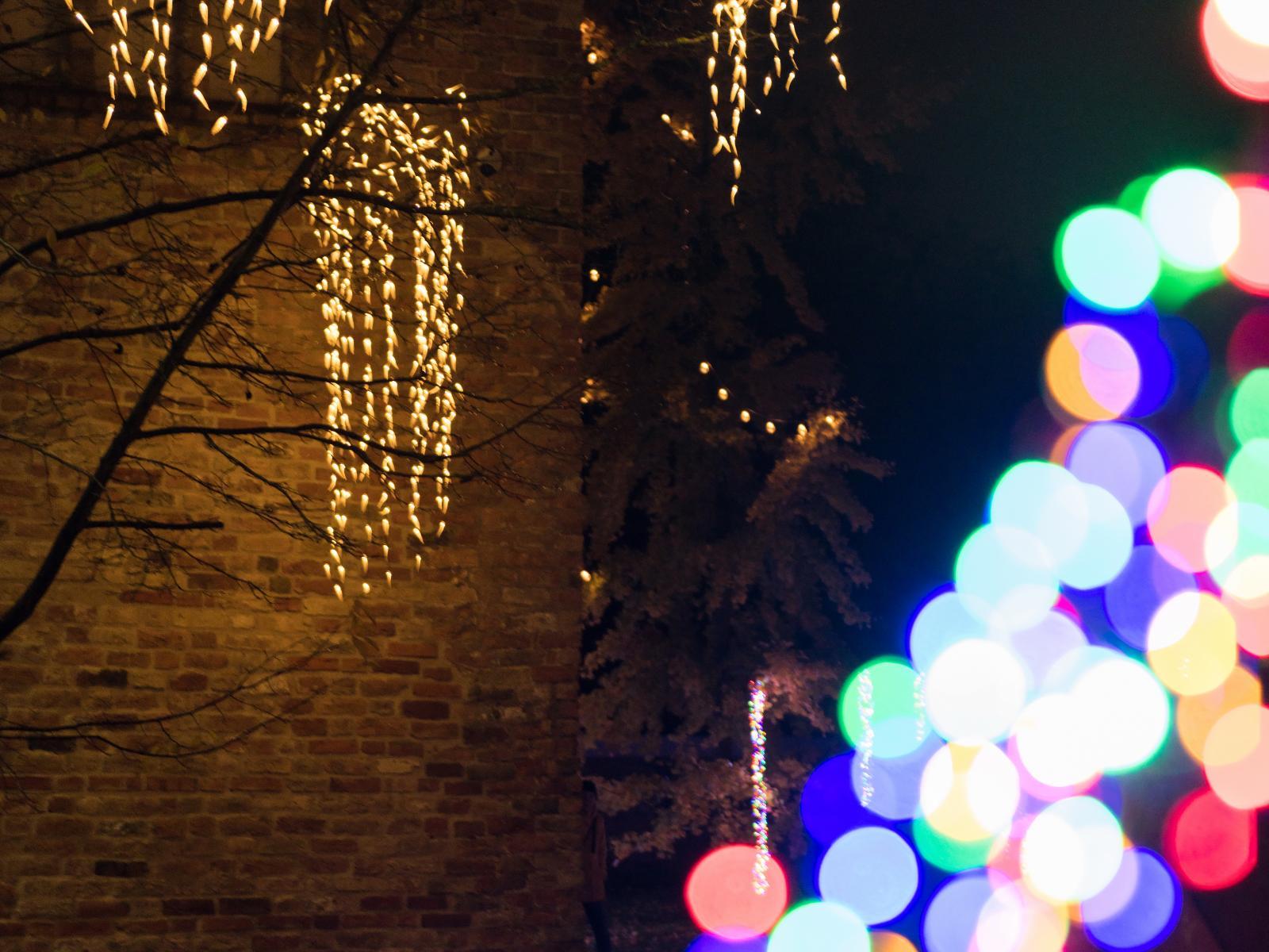 bunte Lichtinstallation im Klostergarten
