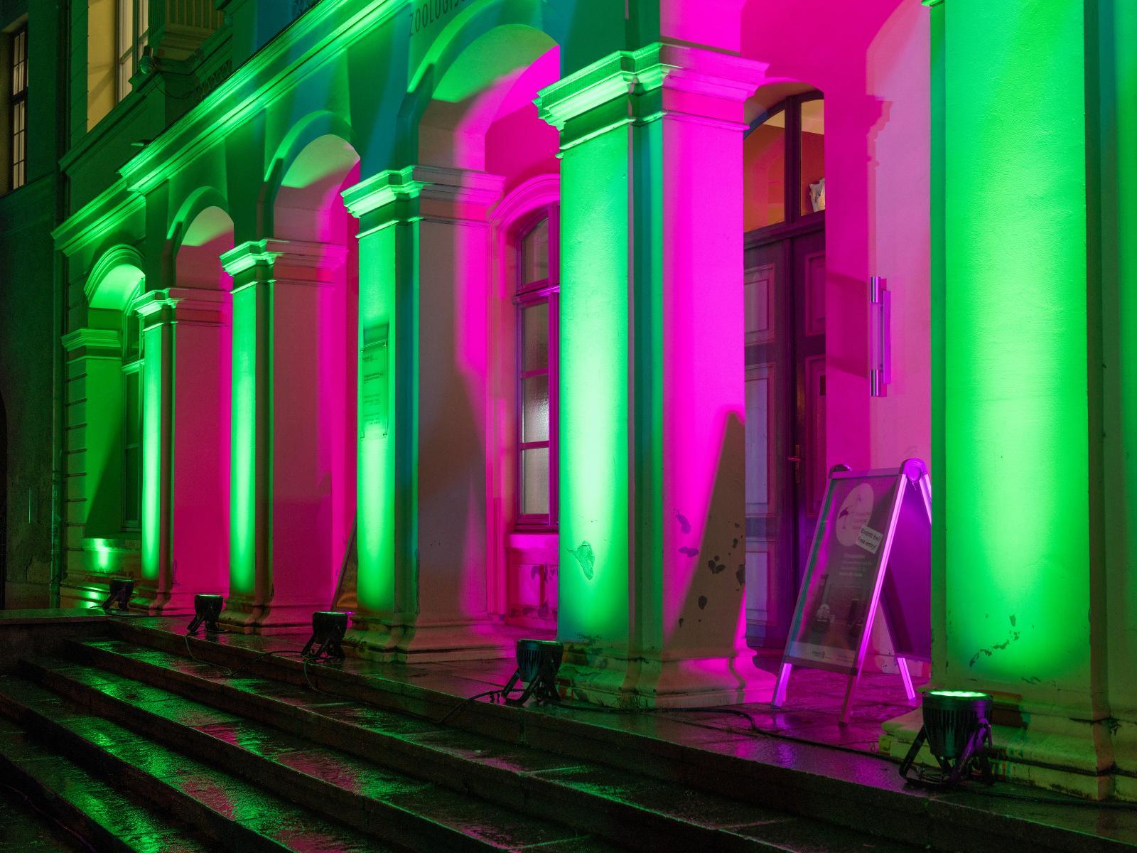 Die Säulen des Zoologischen Instituts erstrahlen in bunten Lichtern